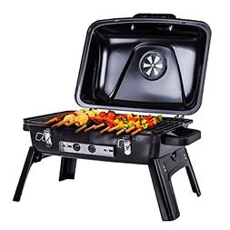 Pinty 250 Square Inch Portable Folding Charcoal Grill Carbon
